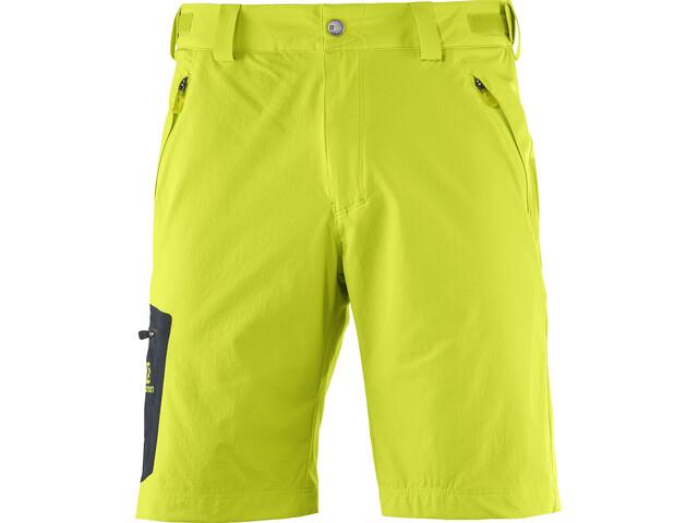 Salomon Wayfarer Shorts Men Regular lime punch